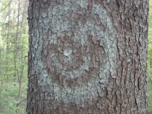 Baum mit Zeichen