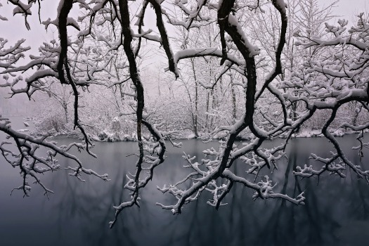 winter-1882831_1920